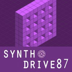 Synth Drive 87 <br><br>&#8211; 10 Themes (Bass, Chords, Melody, Beat Elements), Wav + MIDI Files, 236 MB, 24 Bit Wavs.