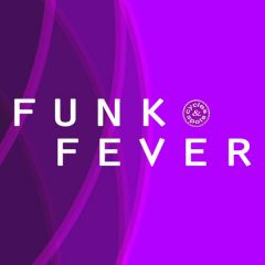 Funk Fever <br><br>&#8211; 10 Themes (Each With Bass Loops, Chord Loops, Guitar Loops, Melody Loops), Wav + MIDI, 21 Beats, 256 MB, 24 Bit Wavs.
