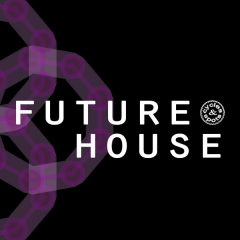Future House <br><br>&#8211; 10 Construction Kits (143 Wav Loops &#038; MIDI Files), 290 MB, 24 Bit Wavs.
