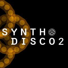 Synth Disco 2 <br><br>– 15 Construction Sets (15 Basslines, 15 Beats, 15 Chords, 17 Melodies+MDI Files), Key-Labeled, 573 MB, 24 Bit Wavs.