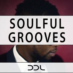 Soulful Grooves <br><br>&#8211; 10 Themes With 89 Loops (Bass, Keys, Guitar, Full Beats, Kicks, Snares/Claps,Hihats,Cymbals), 35 MIDI Loops, 262 MB, 24 Bit Wavs.